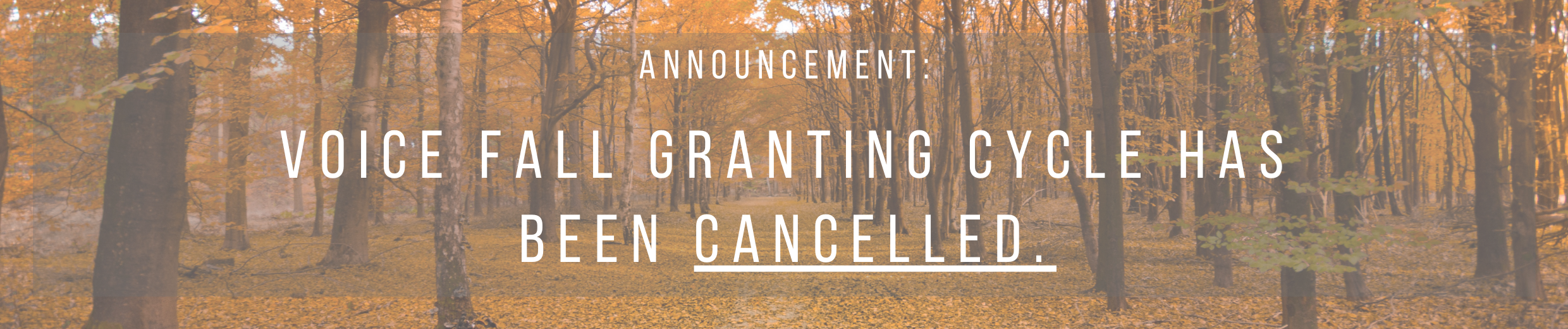 announcement, fall, granting, VOICE